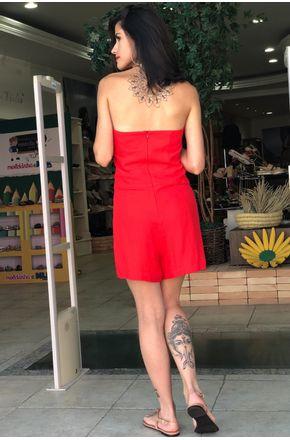 macaquinho-vermelho-regina-salomao-2